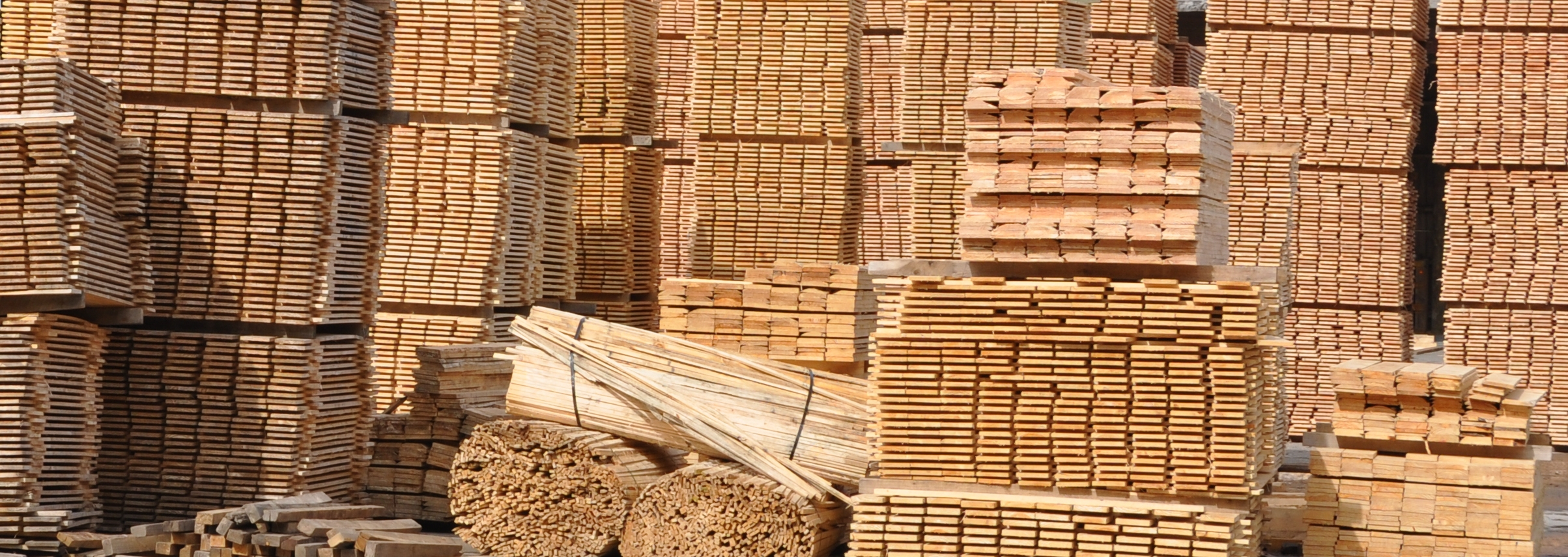 Agathis Sawn Timber ~ Greenheart group